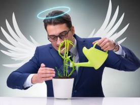 Ask us how: Angel Investors